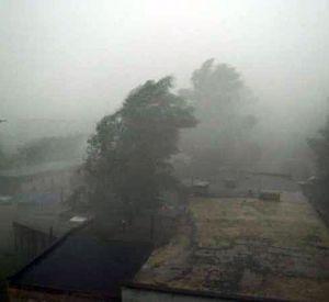 145 населенных пунктов в Смоленской области остались без света из-за сильного ветра