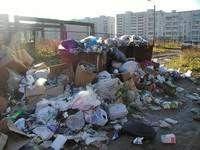 В Смоленске не справляются с уборкой мусора