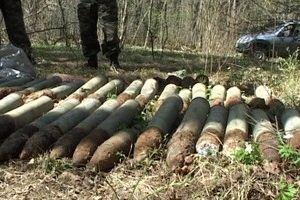 Рядом с озером в Красном Бору нашли склад боеприпасов