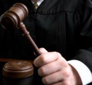 Суд принудительно изъял у жительницы Смоленской области участок в 8,2 га