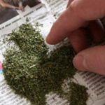 У пассажира смоленского автовокзала полиция обнаружила марихуану