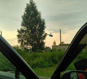 В Смоленской области мужчина ушел в лес за ягодами и не вернулся