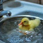 На 27 улицах Смоленска отключат горячую воду