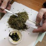 В Смоленске перекрыли канал сбыта наркотиков