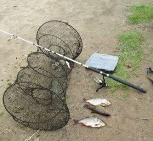 """Линь и две красноперки стоили рыбаку-""""незнайке"""" полутора месяцев """"трудотерапии"""""""